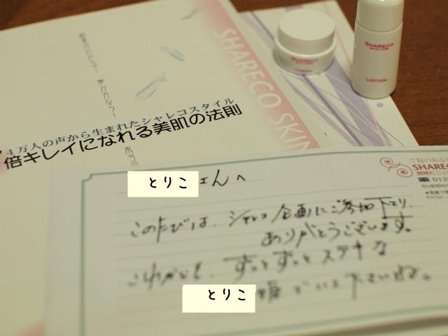 P6043811.jpg